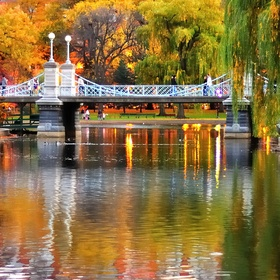 See Boston in the Fall - Bucket List Ideas