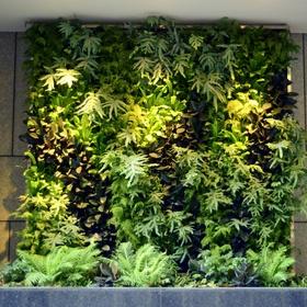 Plant A Vertical Garden - Bucket List Ideas