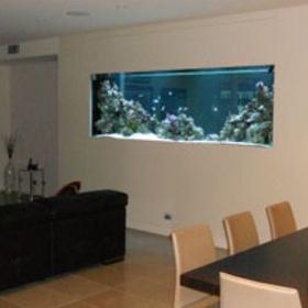 Have a through- wall aquarium - Bucket List Ideas