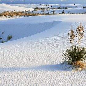 Visit White Sands, New Mexico - Bucket List Ideas