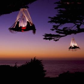 Go Tree Camping In Elk, California - Bucket List Ideas