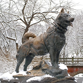 See the Statue of Balto in Central Park, New York - Bucket List Ideas
