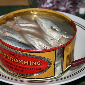 Eat swedish Surströmming - Bucket List Ideas