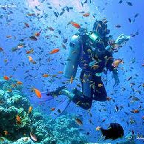 Scuba diving - Bucket List Ideas