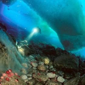 Dive in Antarctica - Bucket List Ideas