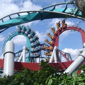 Complete all roller coasters in Florida - Bucket List Ideas