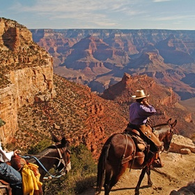 Ride Horses In The Grand Canyon - Bucket List Ideas