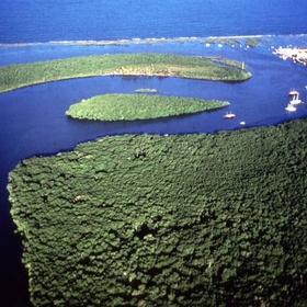 Visit Discovery Coast Atlantic Forest Reserves - Bucket List Ideas