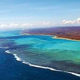 Snorkel Ningaloo Reef - Bucket List Ideas