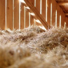 Sleep in a Hayloft - Bucket List Ideas
