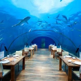 Have a dinner in underwater restaurant - Bucket List Ideas