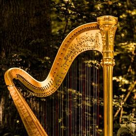 Learn to play the harp - Bucket List Ideas
