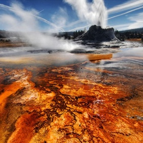 Travel to Yellowstone National Park - Bucket List Ideas