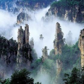 Visit Mt. Tianzi - Bucket List Ideas
