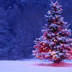 Write a Christmas Song - Bucket List Ideas