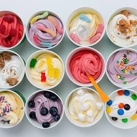 Make frozen yoghurt 3 ways - Bucket List Ideas