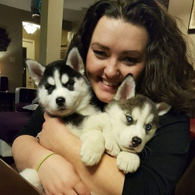 Own a husky - Bucket List Ideas