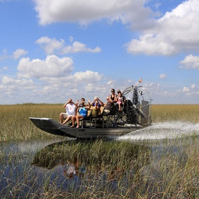 Voir les Everglades - Bucket List Ideas