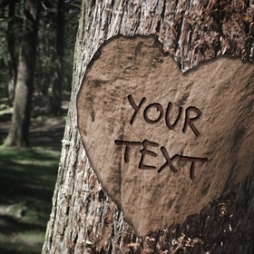 Carve My Name In A Tree - Bucket List Ideas
