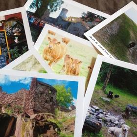 Ein Fototagebuch führen - pro Woche mind. ein Bild - Bucket List Ideas