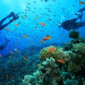Scubadiving - Bucket List Ideas