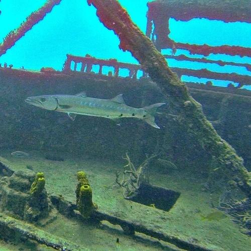 Dive a Shipwreck - Bucket List Ideas