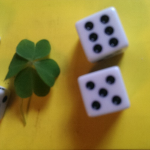Find a 4leaf clover - Bucket List Ideas