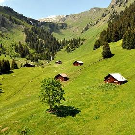 Be on Swiss Alps in Spring - Bucket List Ideas