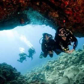 Scuba diving in Tonga - Bucket List Ideas