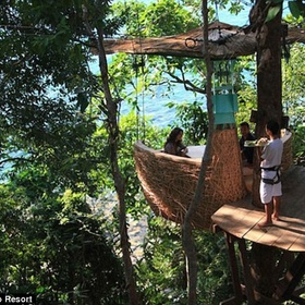 🍴 Eat at The Treetop Dining Pod @ Soneva Kiri Resort - Bucket List Ideas
