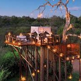 Sleep in a treehouse - Bucket List Ideas
