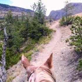 Trail ride in the USA - Bucket List Ideas