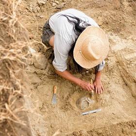 Do an archeological dig - Bucket List Ideas