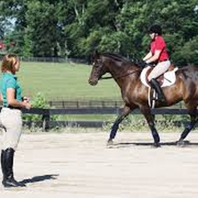 Take Riding Lessons Again - Bucket List Ideas