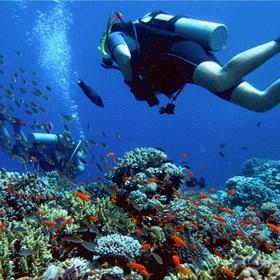 Faire de la plongée sous marine - Bucket List Ideas