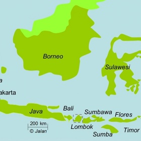 Go to Flores & Sulawesi - Bucket List Ideas