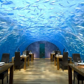 Go to the Ithaa Undersea Resort restaurant - Bucket List Ideas