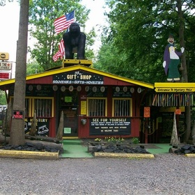 Take the Gravity Tour at the Anstead Mystery Hole - Bucket List Ideas