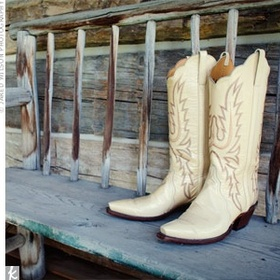 Attend the Calgary Stampede - Bucket List Ideas