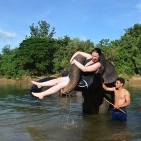 Bathe elephants at a rescue in Thailand - Bucket List Ideas