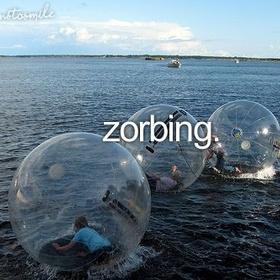 Go Zorbing (Rotorua, Bay of Plenty, New Zealand) - Bucket List Ideas