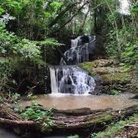 Karura forest - Bucket List Ideas