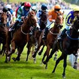 Go to the horse races - Bucket List Ideas