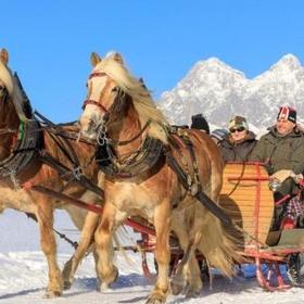 Go on a horse drawn sleigh ride - Bucket List Ideas