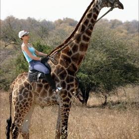Ride a llama and a giraffe - Bucket List Ideas