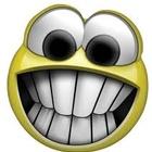 Misty Weeks's avatar image