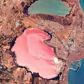 Admire the Pink Hues of Laguna Salada de Torrevieja in Spain - Bucket List Ideas