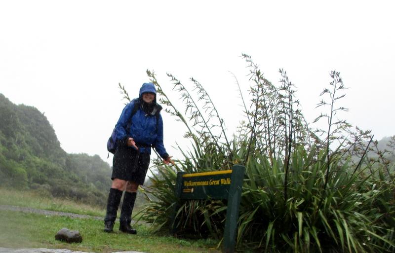 Bucketlist » Great walk # 1 : lake waikaremoana (catthekiwi)