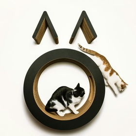 Visit the 1st Japanese cat cafe in the US - Bucket List Ideas