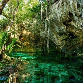 See Gran Cenote, Mexico - Bucket List Ideas